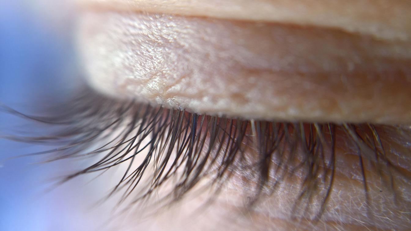 Nahaufnahme eines Wimpernkranzes bei einem geschlossenem Auge