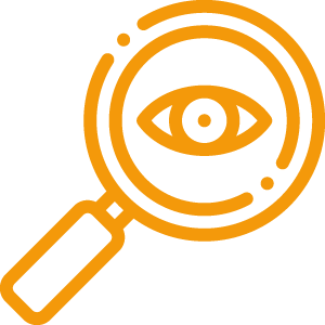 Icon Auge unter der Lupe
